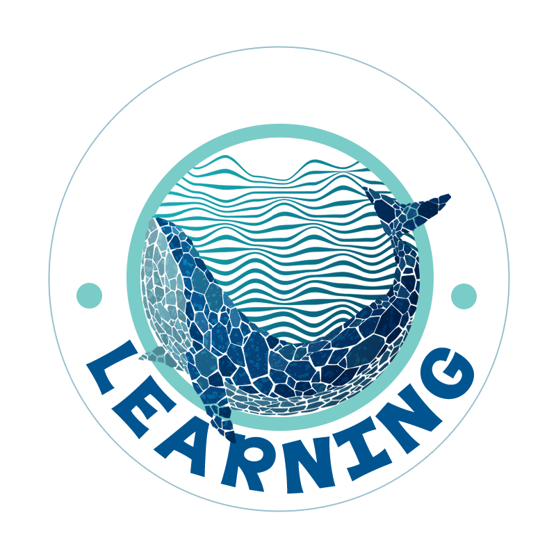 Blue Whale Learning